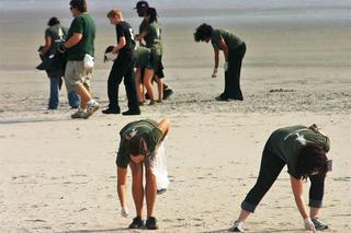 coastsweep-2016-beach-cleanup-750_large_landscape