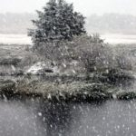 pi-snow1